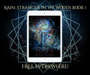 Rain - Stranger in the Woods Book I